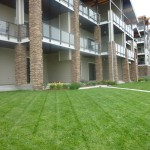 Turfcare Landscaping Sandpoint Grounds Maintenance (4)