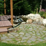 Backyard Pond (2)