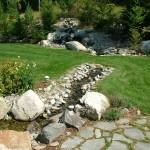 Backyard Pond (3)