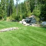 Backyard Pond (4)
