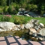 Backyard Pond (7)