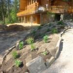 Log Home (1)