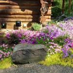 Log Home (8)